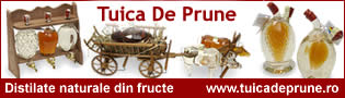 http://www.tuicadeprune.ro